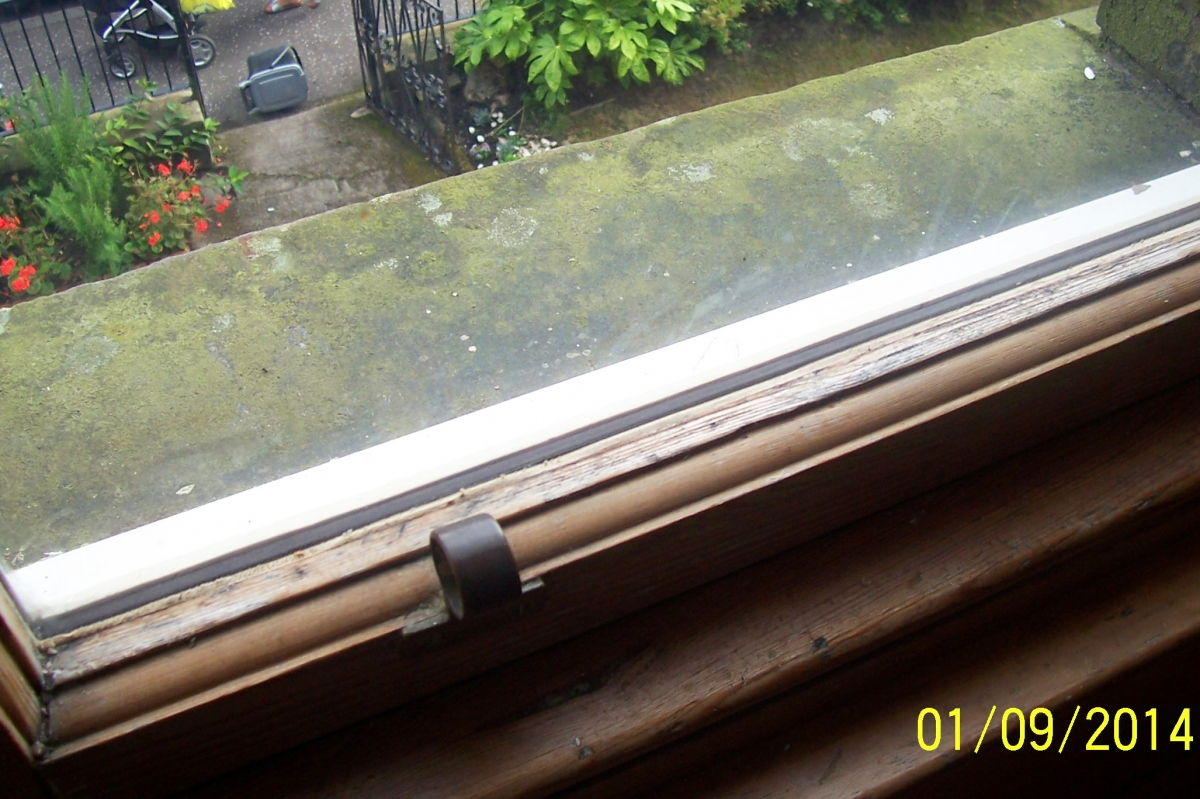 Wooden slimline double glazing detail